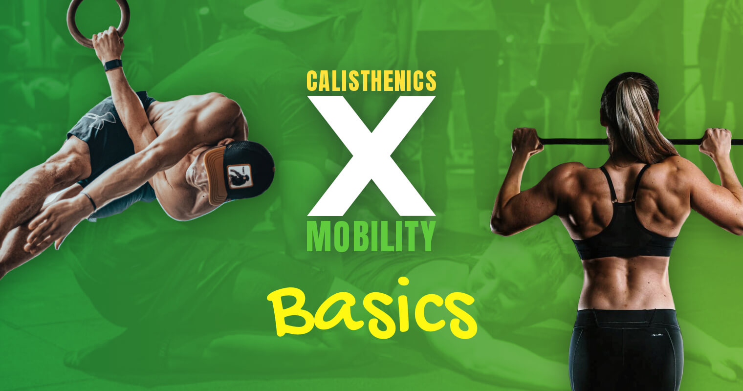 Calisthenics X Mobility Basic Kurs